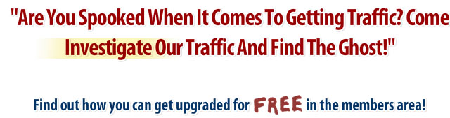 Investigate Our Traffic